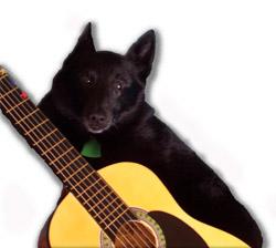 marv_guitar.jpg